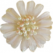 Jane- Cream Flower With Pearls