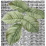 Jane- Vintage Leafy Branch