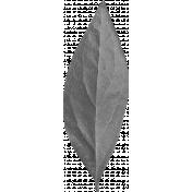 Shine- Leaf 01 Template