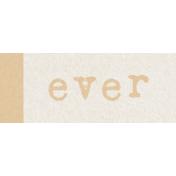 Renewal May 2015 Blog Train Mini Kit- Tan Label- Ever