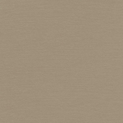 Shine- Solid Paper- Brown