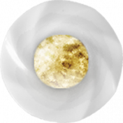 Shine- White and Gold Buttom