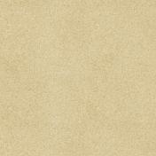 Birthday Wishes- Corkboard Paper