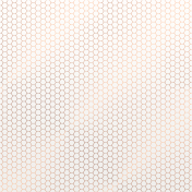 Already There- Copper Vellum Honeycomb Paper