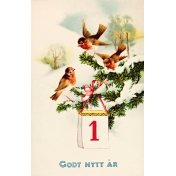 Vintage New Year Cards- Birds