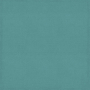 The Best Is Yet To Come 2017- Solid Paper Light Teal 1