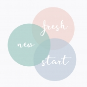 Fresh Start Journal Cards- Venn- 4x4
