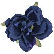 Cozy Kitchen Navy Blue Silk Flower