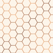 Already There Paper- Metallic Honeycomb