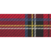 Anarchy in the UK- Tartan Ribbon