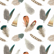 Feathers Transparent Pattern 01