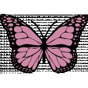 Pink Butterfly Illustration Endures