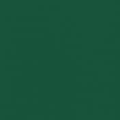 Dark Green TH Solid Paper