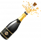 Champagne Bottle Ann Graphic