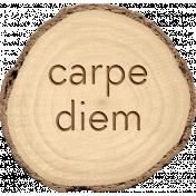 Spread Your Wings- Tree Slice Carpe Diem