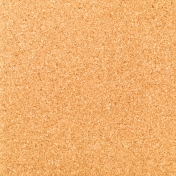 Work Day_Paper Corkboard