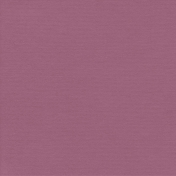 Autumn Day_Paper Solid Burgundy Light