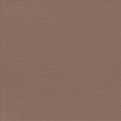 Autumn Day_Paper Solid Taupe Dark