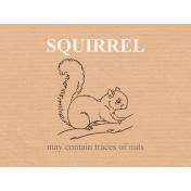 Autumn Day_JC Squirrel 3x4h