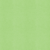 BYB2016- Paper Solid Green Light