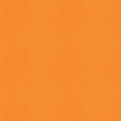 BYB2016- Paper Solid Orange