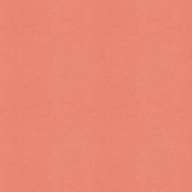 BYB2016- Paper Solid Peach Dark