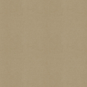 BYB2016- Paper Solid Tan