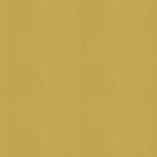 BYB2016- Paper Solid Yellow Dark
