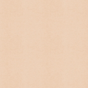 Picnic Day- Paper Solid Beige
