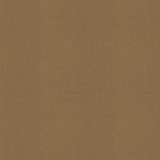 Picnic Day- Paper Solid Brown Dark