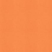Picnic Day- Paper Solid Orange