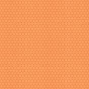 Picnic Day- Paper Suns Orange