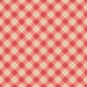 Picnic Day- Paper Plaid Large Red