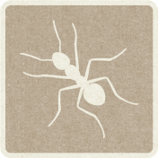 Picnic Day_Pictogram Chip_Brown Light_Ant