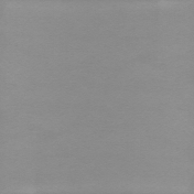Summer Day- Paper Solid Gray Dark