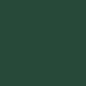 Family Day- Paper Solid Green Dark- UnTextured
