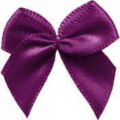 Thankful-Bow-Purple