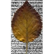 AutumnArt-Leaf-Yellow