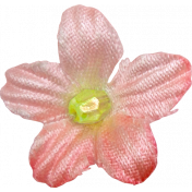 Our House-Flower-Pink with Bead1
