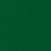 Winter Wonderland Christmas- Paper Solid Dark Green