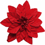 Winter Wonderland Christmas- Poinsettia Red