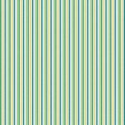 Papers 1- Multi Stripes