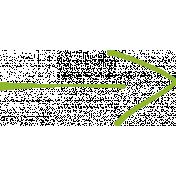 XY Doodle- Lime Arrow 1