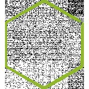 XY Doodle- Lime Hexagon Medium 2