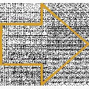 XY Doodle- Mustard Arrow