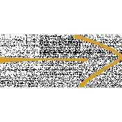 XY Doodle- Mustard Arrow 1