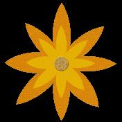Flower – March 2021 orange
