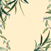 Flora Paper 3