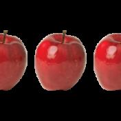Apple Border 1