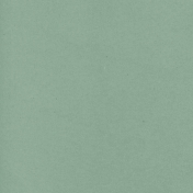 Spring Fever Solid Paper Moss Green